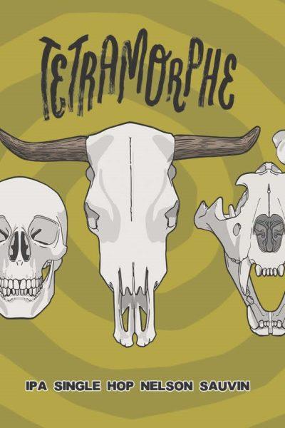 tétramorphe